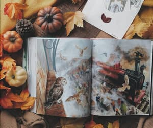 autumn, books, and fall image