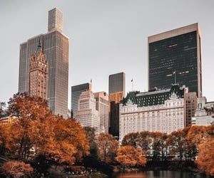 autumn, city, and new york image