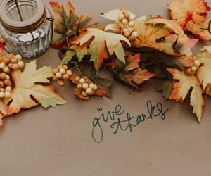 autumn, leaves, and november image