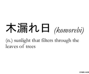 words, sunlight, and japanese image