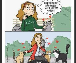 Gatos, año nuevo, and propósito image