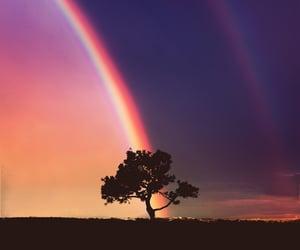 beautiful, photo, and rainbow image