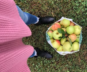 america, sweater, and apple picking image