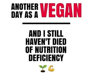 quote and vegan image