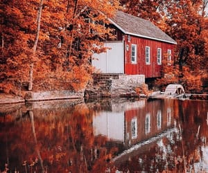 autumn, canada, and colors image