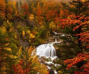 autumn, nature, and waterfall image