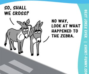 cartoon, donkeys, and crosswalk image