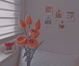 aesthetic, colores, and flores image