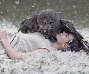 animals, love, and wilderness image