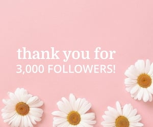 thank you, thanks for following, and 3k followers image
