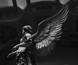aesthetic, angel, and black image