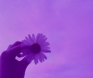 aesthetic, purple, and pretty image
