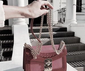 bags, gucci, and style image