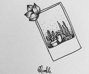 art, black and white, and cactus image