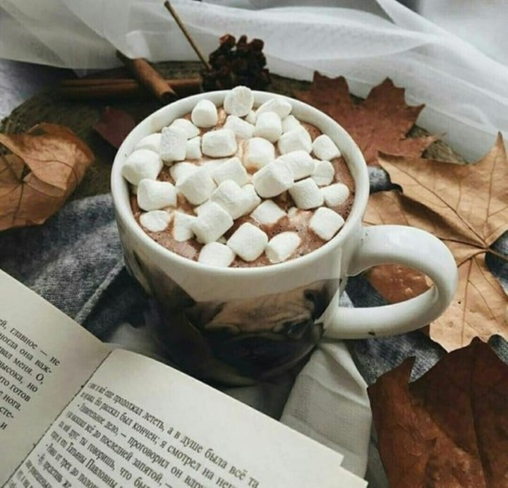 article, autumn, and Cinnamon image