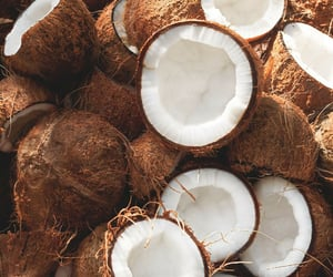 coconut, fruit, and food image