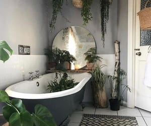 bathroom, plants, and decor image