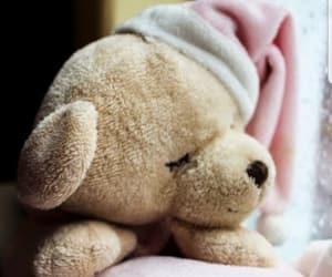 bear, night, and pink image