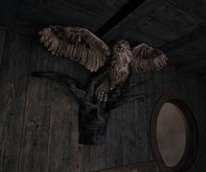bird, eerie, and brown image