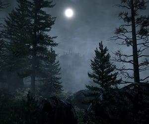 Darkness, eerie, and forest image