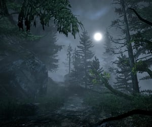 Darkness, moon, and forest image