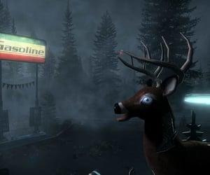 deer, float, and fog image