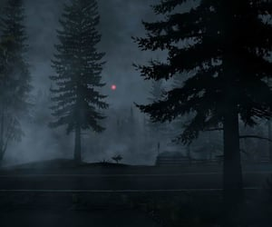 eerie, forest, and fog image