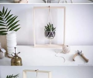 diy, do it yourself, and plant image
