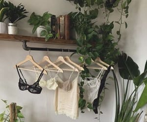 lingerie and plants image