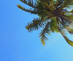 beach, blue, and colorful image