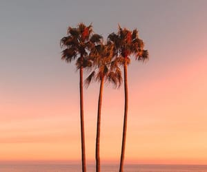 beach, cali, and california image