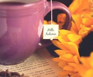 autumn, tea, and fall image