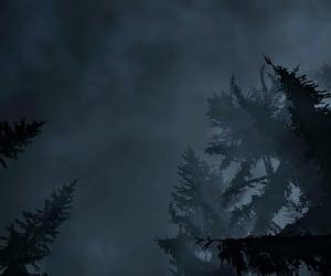 fog, mist, and night image