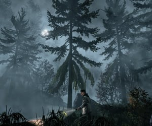 eerie, forest, and flashlight image
