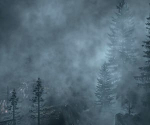 Darkness, fog, and forest image