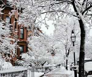 city, winter, and Houses image