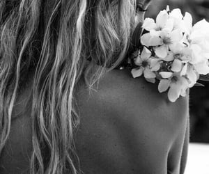 black & white, photography, and flower image