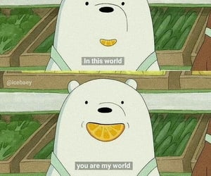 bear, quotes, and cute image