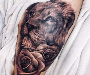 girl, leg, and lion image