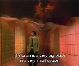 brain, quotes, and place image