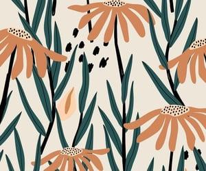 beige, flower, and orange image