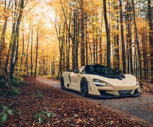 autumn, leaves, and mclaren image