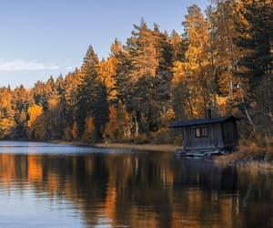 autumn, autumnal, and beautiful image