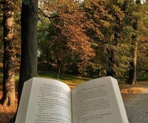 autumn, season, and book image