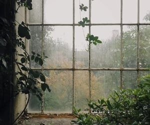 window, autumn, and fall image