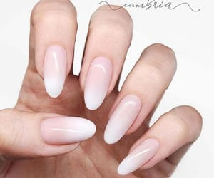 french, french manicure, and manicure image
