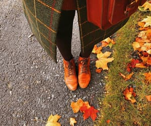 autumn, outfit, and colorful image