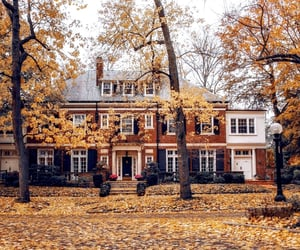 architecture, leaves, and autumn image