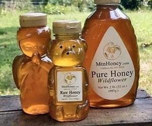 aesthetic, honey, and theme image