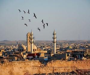 iraq, mosul, and صور  image